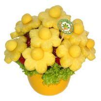FLOWER GARDEN - Gyümölcscsokor
