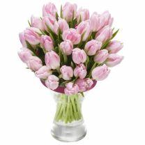 Rózsaszín Tulipánok - CSAK BUDAPESTEN