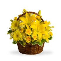 Erő - virágkosár