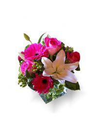 Különös - vázával
