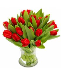 Piros Tulipánok - CSAK BUDAPESTEN