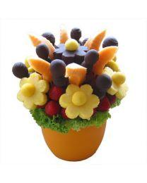 SUNFLOWER - Gyümölcscsokor