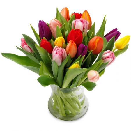 virágküldés tulipáncsokor